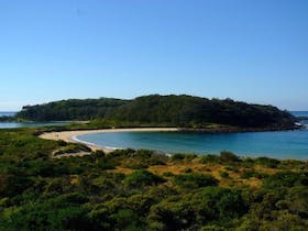 Photo of Broulee Island Reserve Walk