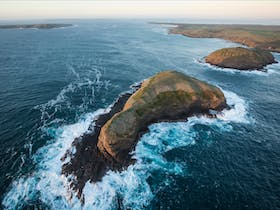 The aptly named Dough Boys, just off the coast of Cape Grim, Tasmania
