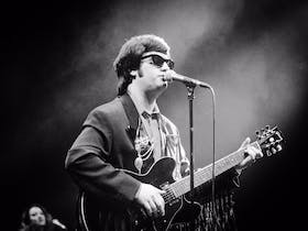 A Tribute to Roy Orbison: In Dreams: The Greatest Hits