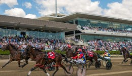 Image of the event 'Provincial Race Days at Menangle Park'