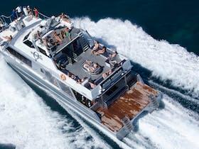 Ocean Freedom  - Personal Snorkel & Dive