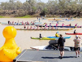 10km Race Start at the Outback Paddle Regatta Festival