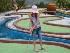 Illawarra Golf Complex and Crazy Putt