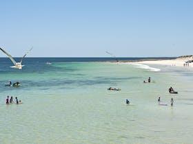 Port Rickaby image