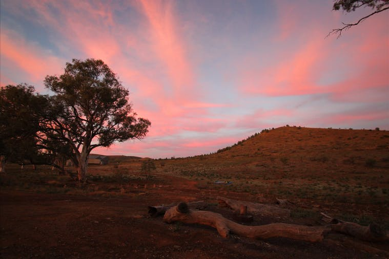 IkaraFlinders Ranges National Park