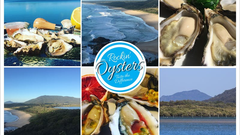 Rockin' Oysters : Taste the Difference