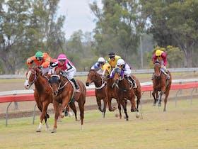 Thangool Races