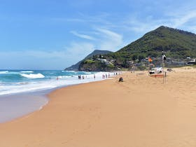 Stanwell Park image