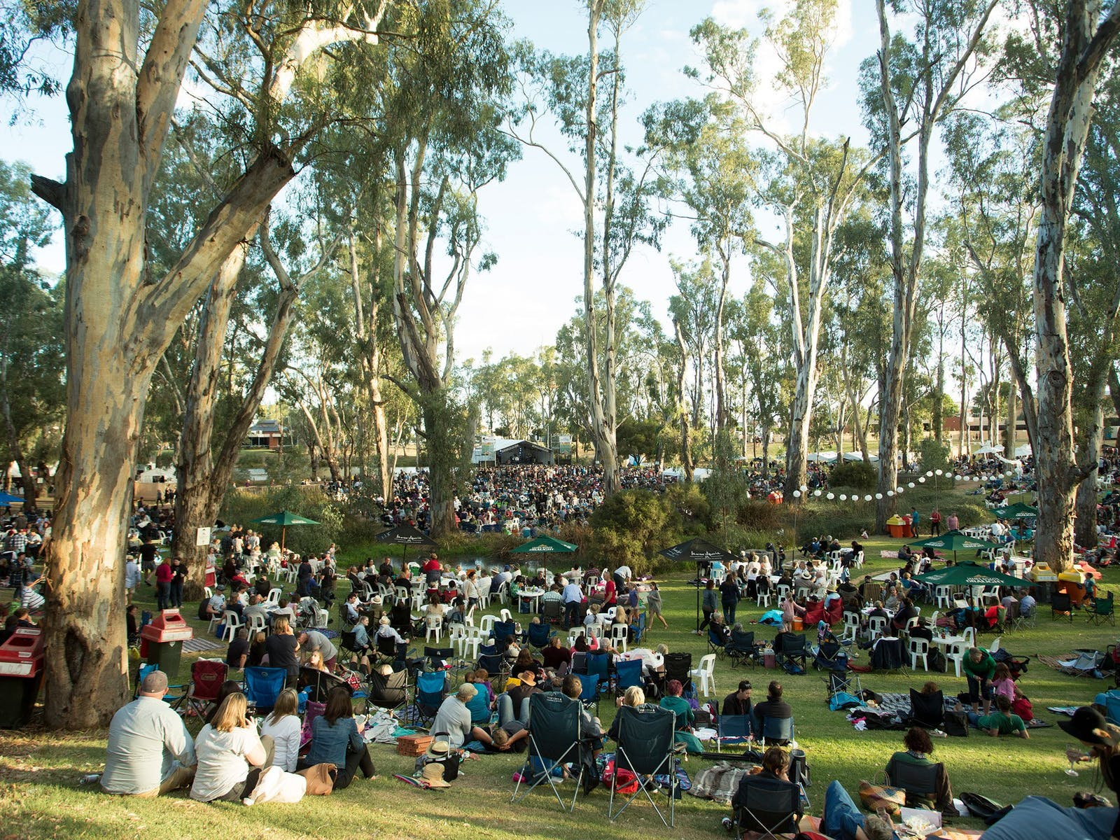 Image for Riverboats Music Festival