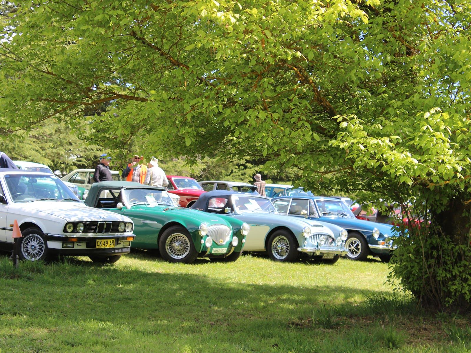 Vintage Cars at Walcha Mountain Festival