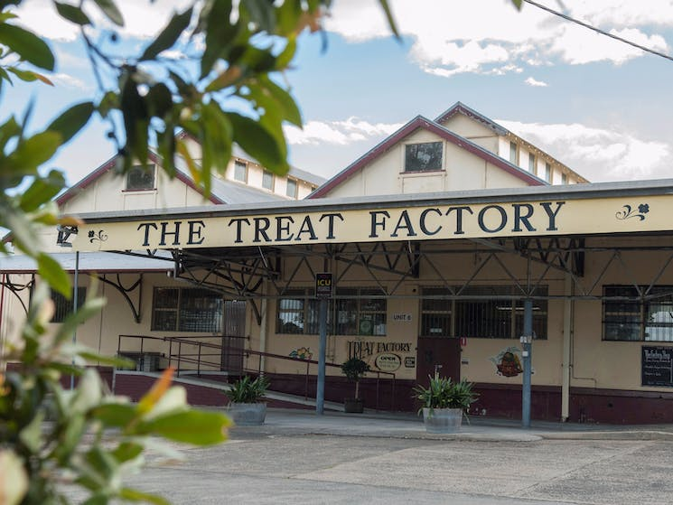The Treat Factory Berry