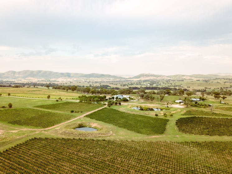 Birds eye view of of Lowe vineyards, farm and winery