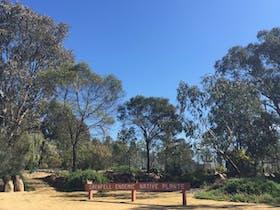 Grenfell Endemic Garden