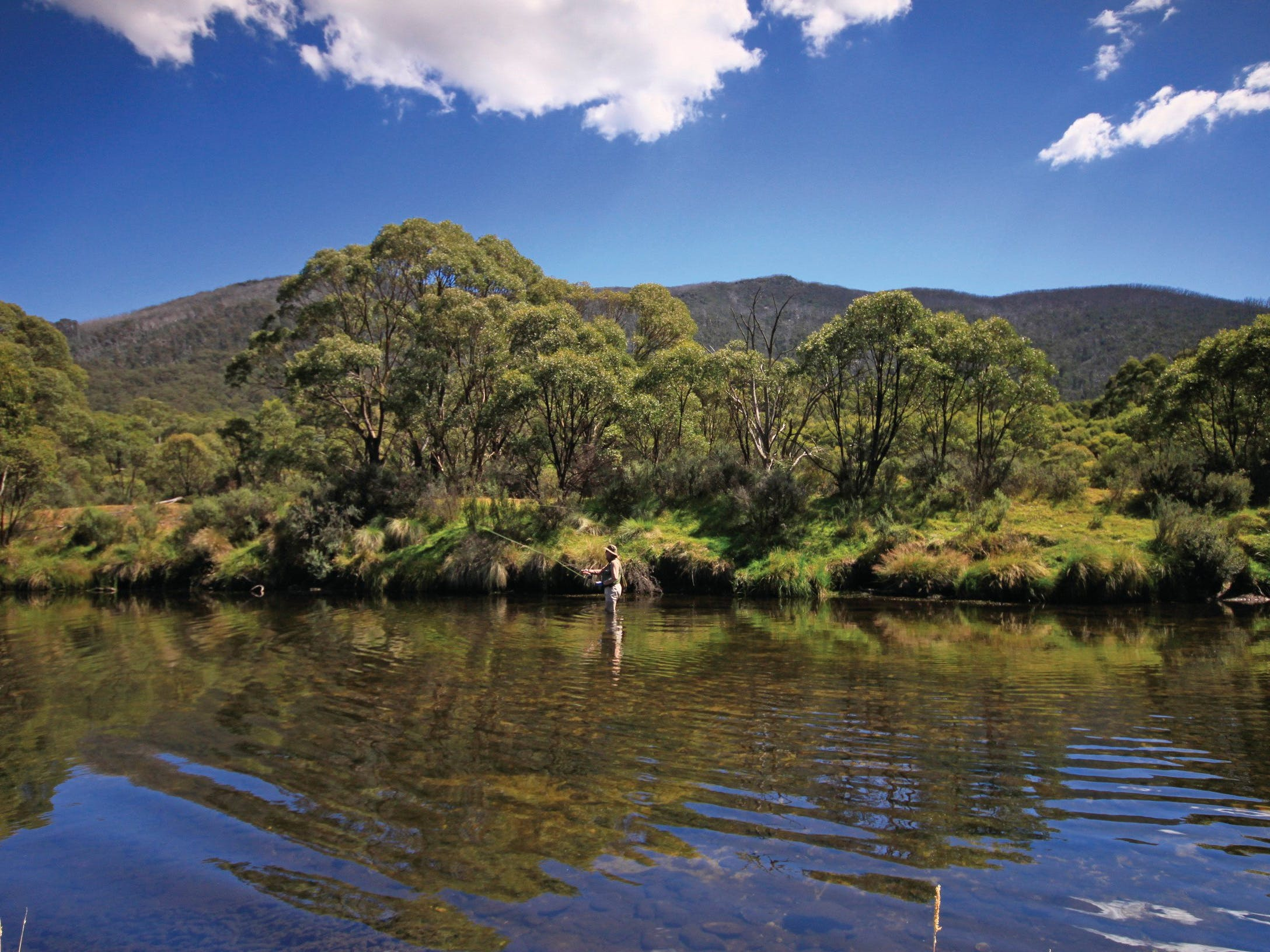 Go fly fishing in Thredbo River. Copyright E Sheargold