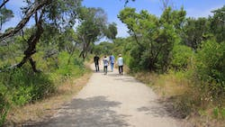 Coles Track, Point Nepean