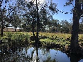 Galbraith Bush Camping – South Burnett