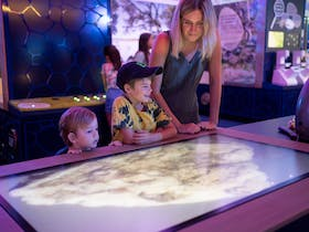 Marine Discovery Centre Viewing
