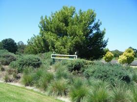 Lone Pine Park