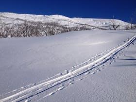 Snow Safety Australia