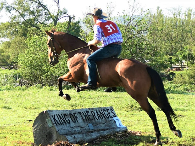 'Bareback' event showing rider skill without the aid of a saddle