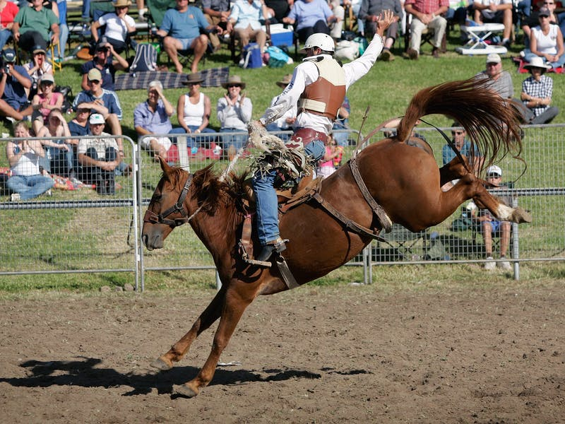 Moruya New Year's Day Rodeo