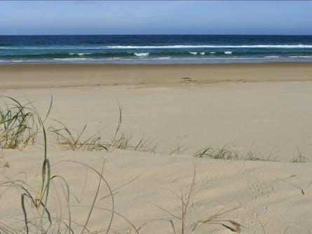 Bongil Beach