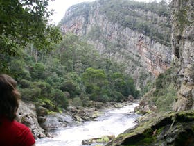 Leven Canyon Floor Walk