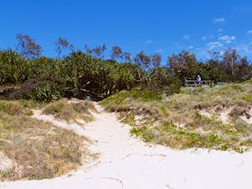 Looking back to the access track and viewing platform. Frazers Reef, Iluka.