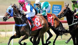 Image of the event 'Merimbula Cup Race Day'