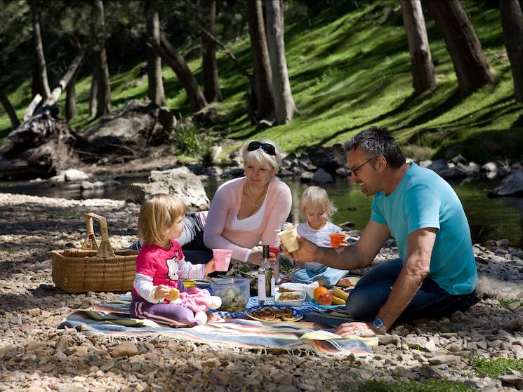 River picnic things to do with family