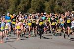 Lake Run Ride - Run Start