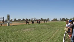 Image of the event 'Balranald Races -Derby Day'