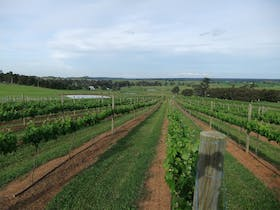 Razorback Ridge Wines Open Weekends