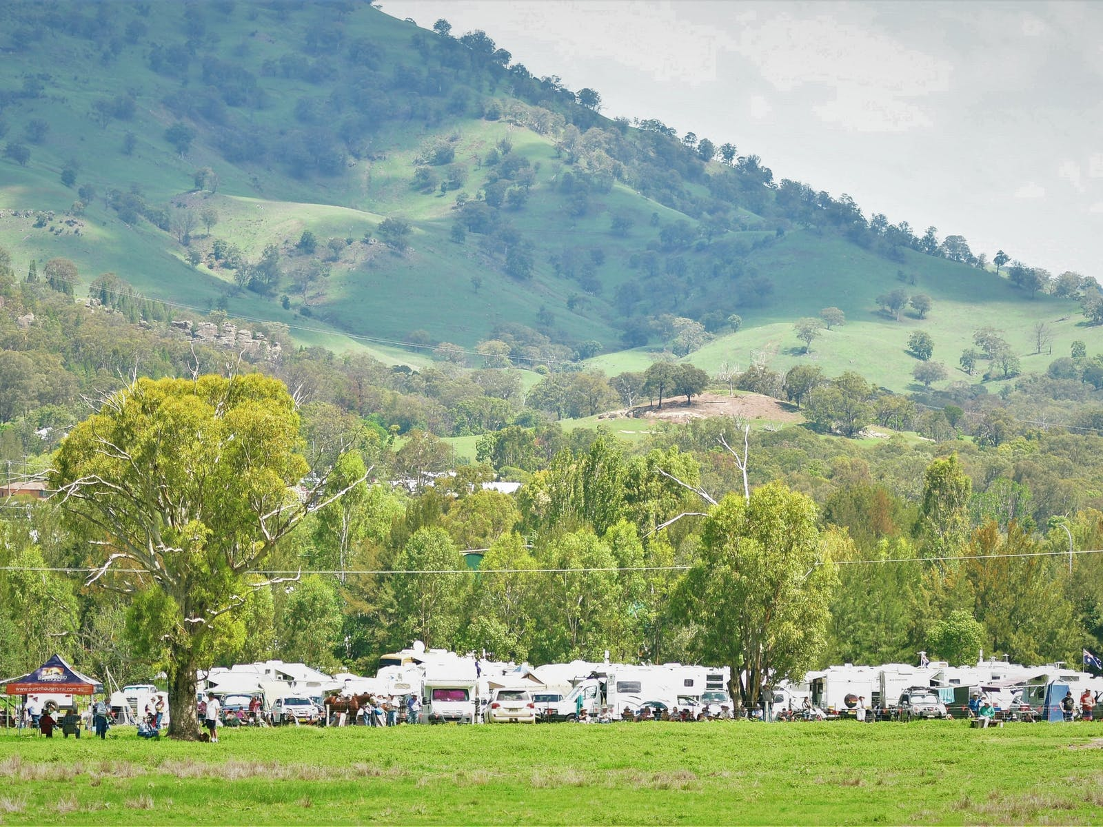 Image for King of the Ranges Stockman's Challenge and Bush Festival