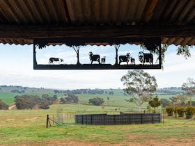 The rural setting of DC's Madra Cowra