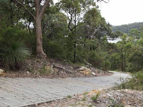 Great North Walk – Ku-ring-gai Chase National Park