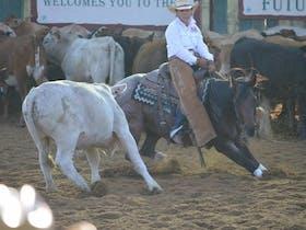 Cotton Country Cutting Club local competitor Lori Mackay (women rider)