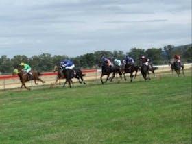 Grenfell Jockey Club Races