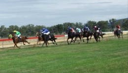 Image of the event 'Grenfell Jockey Club Races'