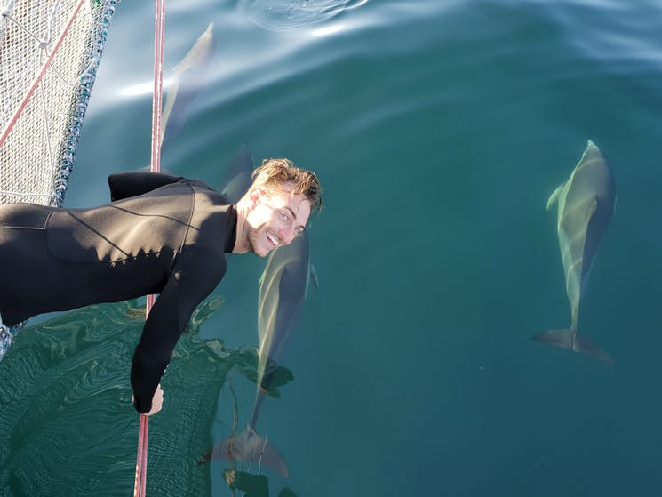 Operations Manager, Matt MacCabe, getting very close to the beautiful wild dolphins.