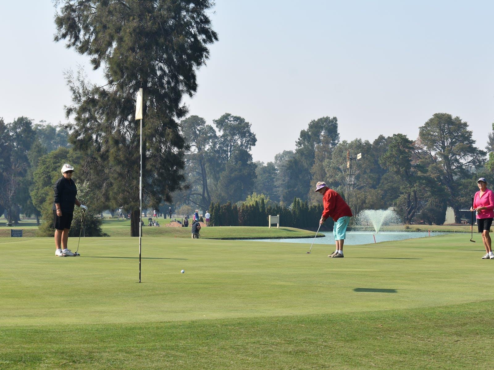 Image for NSW VGA Veterans Week of Golf