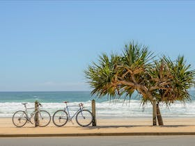 Cycle Queensland Adventure Tour - Goondiwindi to Gold Coast