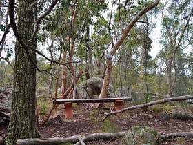 Rest area on our bushwalk