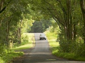 Wadeville image