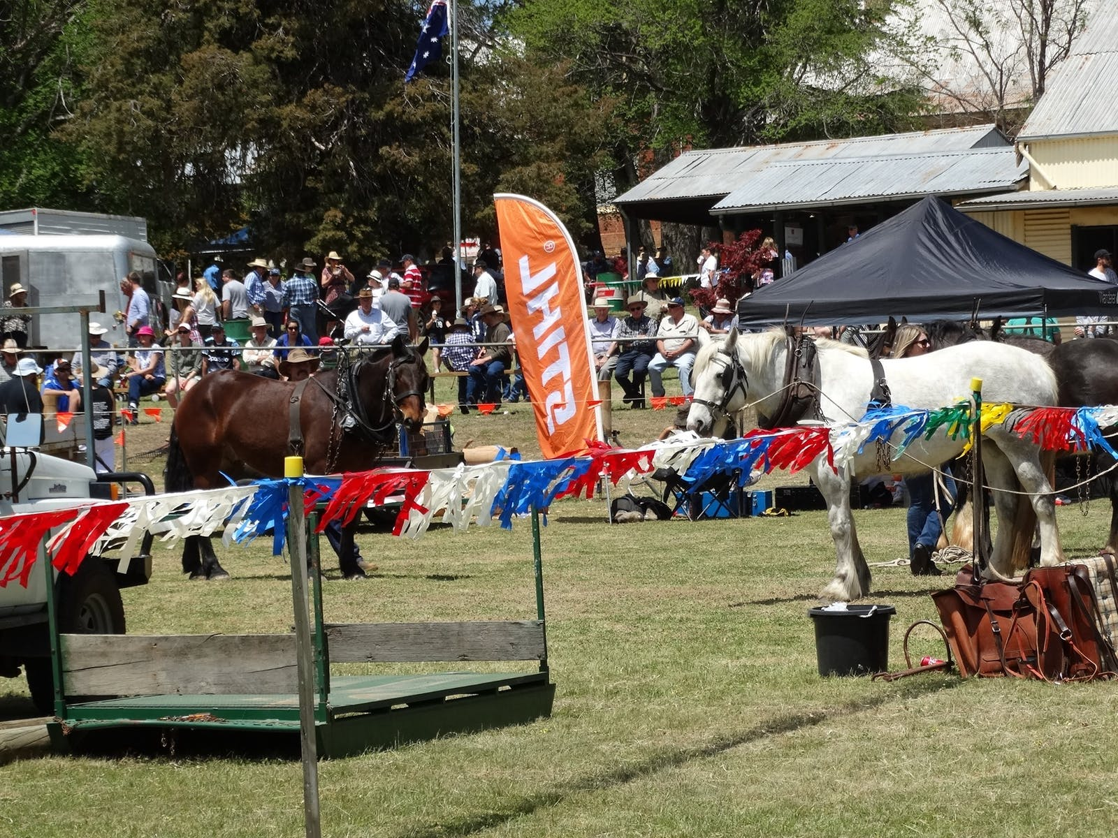 Image for Carcoar Show