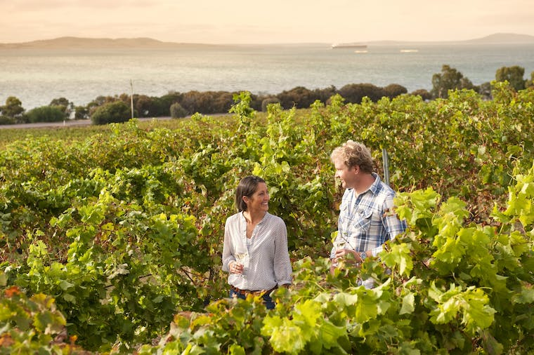 1 Day Port Lincoln Tour  Tasting Eyre