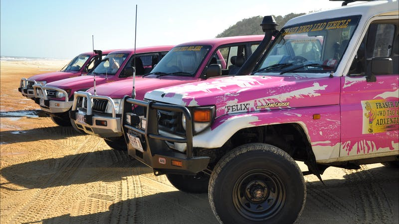 Fraser Dingo Four Wheel Drive Hire
