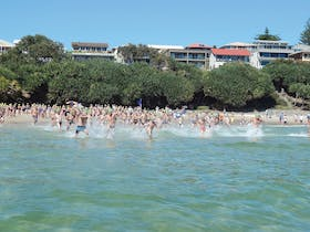Yamba Ocean Swims