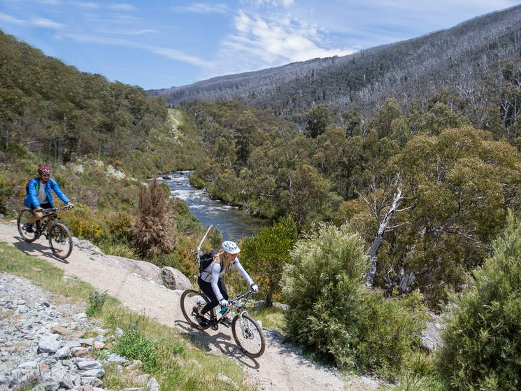 A couple mountain bike beside Thredbo River, on Thredbo Valley track, in Kosciuszko National  Park
