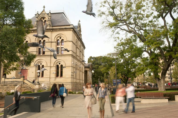 Classic Adelaide  Culture and Heritage Morning or Afternoon Walking Tour